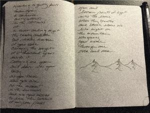 journal_pages